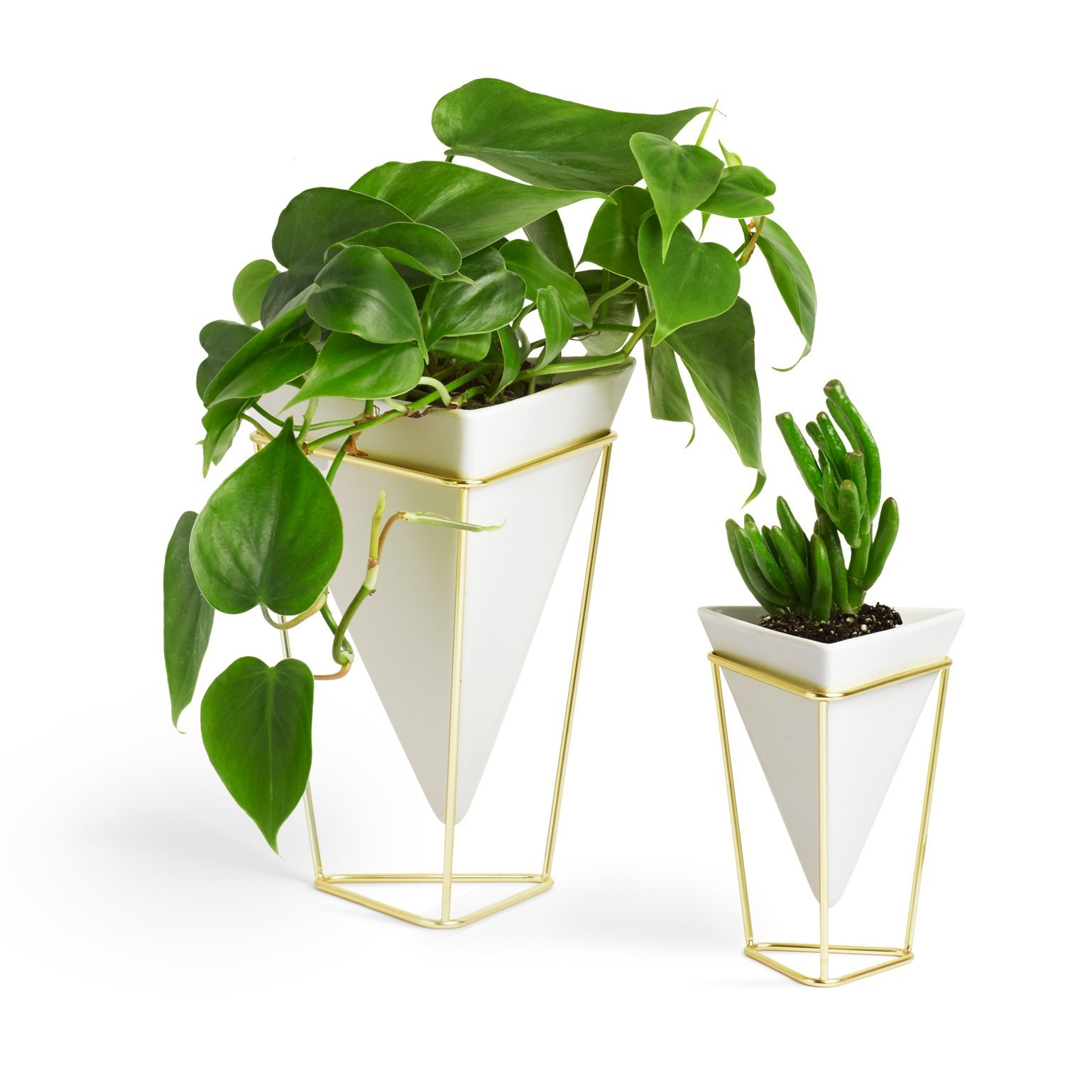 Umbra Indoor Plant Vase